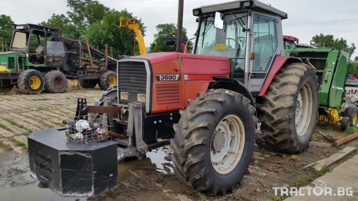 Трактори Massey Ferguson 3690 0 - Трактор БГ