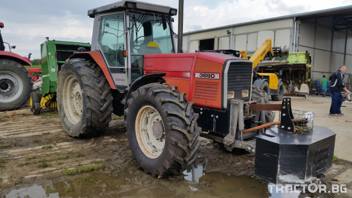 Трактори Massey Ferguson 3690 2 - Трактор БГ