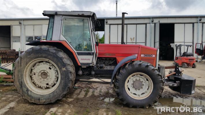 Трактори Massey Ferguson 3690 3 - Трактор БГ